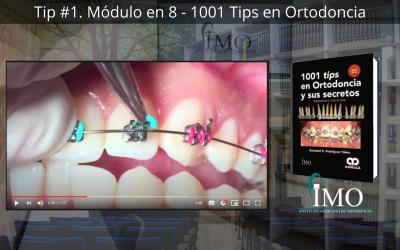 Módulo en 8 – 1001 Tips en Ortodoncia